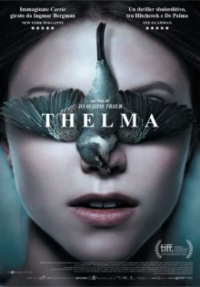 ico - Thelma