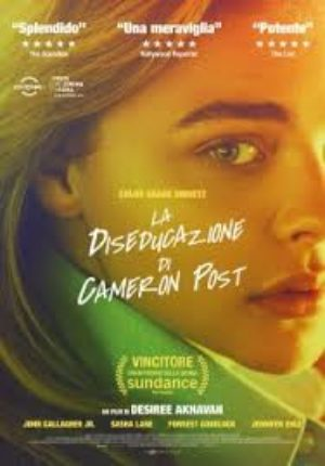 ico - La Diseducazione di Cameron Post (The Miseducation of Cameron Post)